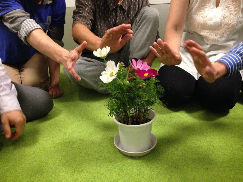 花のエネルギーを感じるワーク
