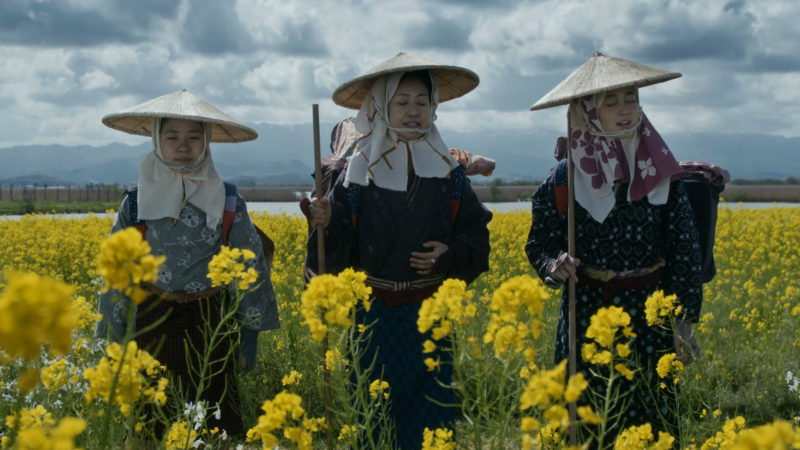 一面に菜の花畑の中、二人の親方と旅をするハル